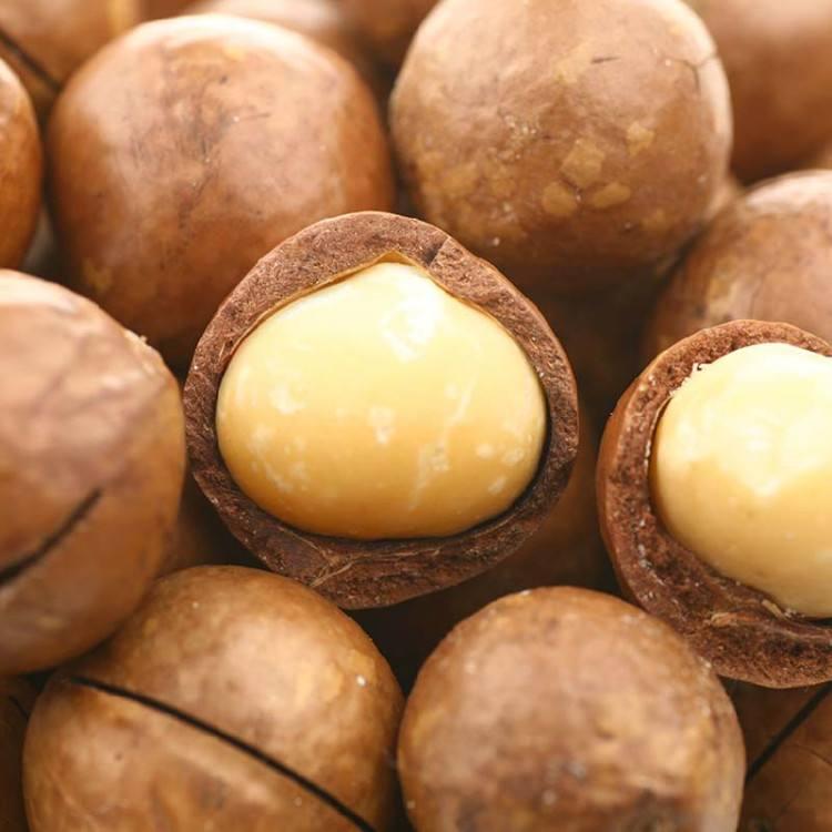 福建靠谱的坚果夏威夷果供应厂家-上海物超所值的夏威夷果批发供应