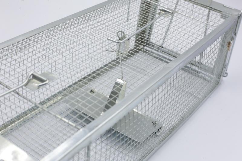 廣東價格適中的雙門手可折型老鼠籠供應-哪里可以買到捕鼠器