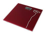 WT100电子健康秤