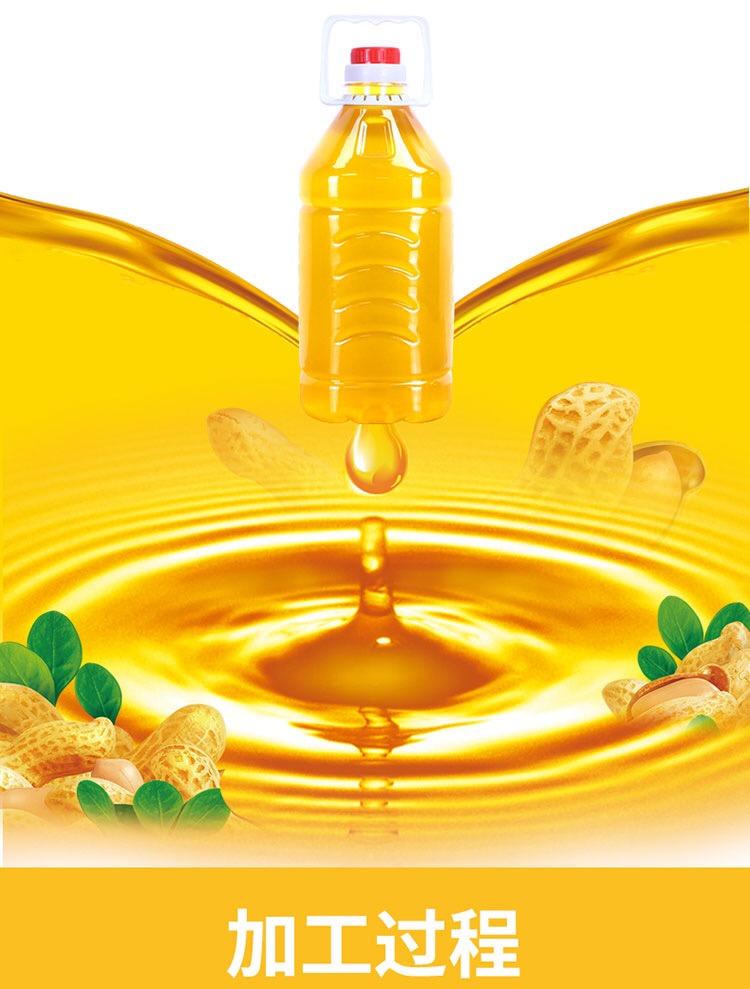 廣東農家花生油-聲發油廠供應報價合理的自榨花生油