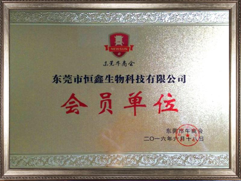 公司荣誉2