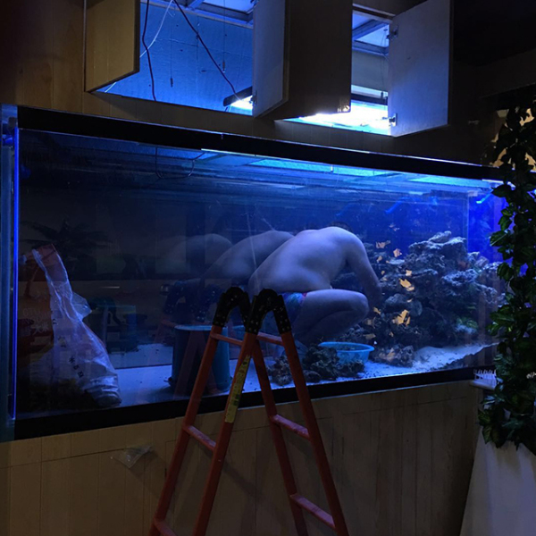 大型鱼缸定做