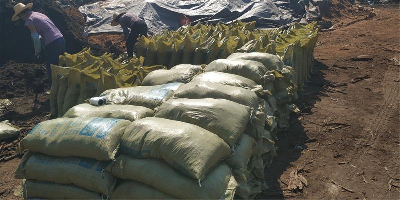 花卉草炭土,哪里能买到实惠的工程泥炭土
