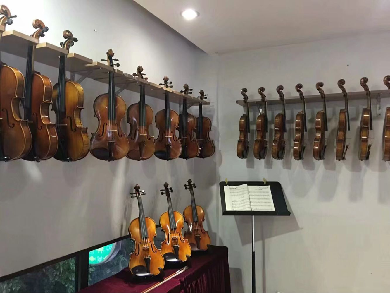 广州哪里有供应价格实惠的小提琴|小提琴哪个品牌好