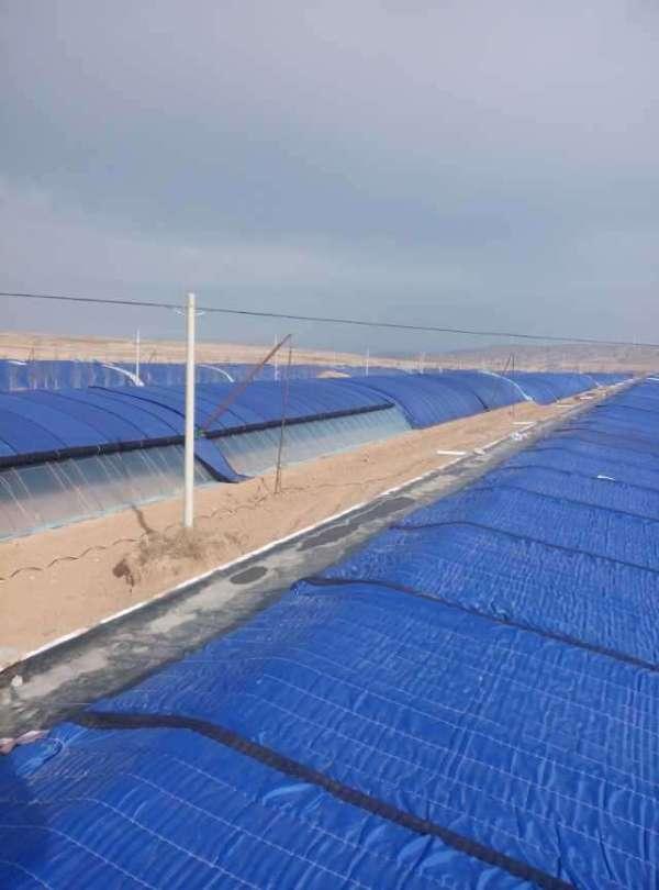 防雨型大棚棉被厂家