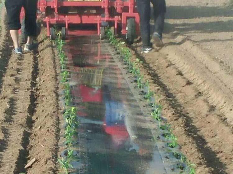 辣椒移栽机导苗管的用处