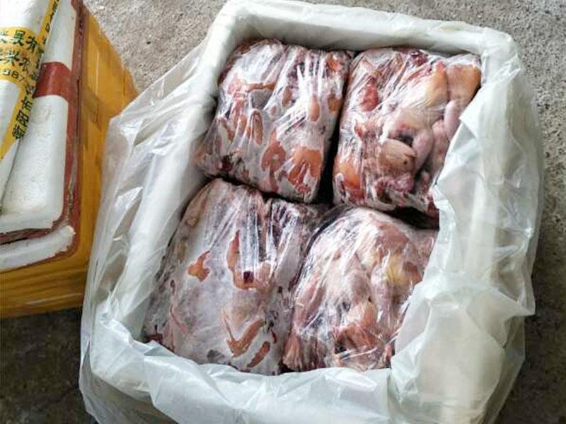 四会冰鲜鹧鸪-李斌鹧鸪实惠的广东冰鲜鹧鸪供应