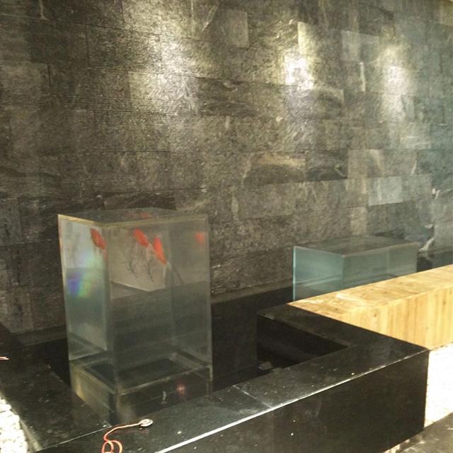 鱼池水幕墙