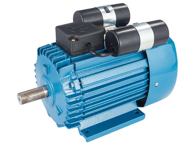 供应智高电机实用的YL系列双值电容异步电动机(单相) 笼型异步电动机