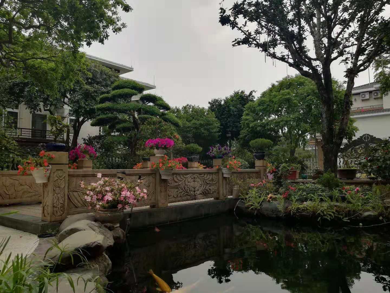 鱼池假山凉亭花架制造