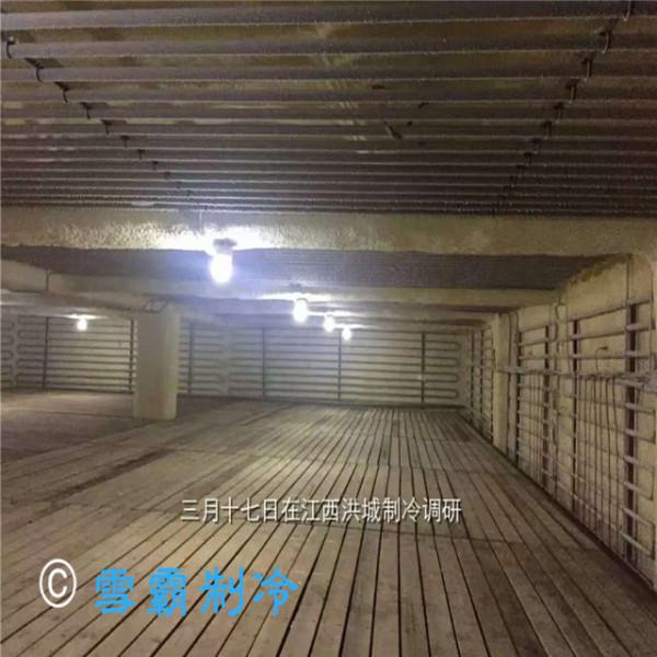 江西洪城大型低温冷库设计安装