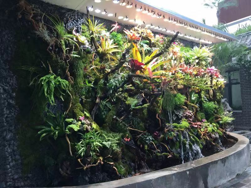 生态雨林缸景观
