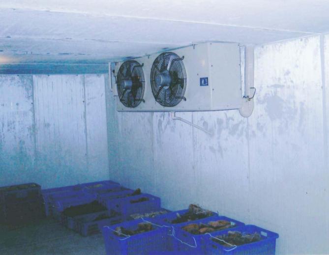广州果蔬冷库