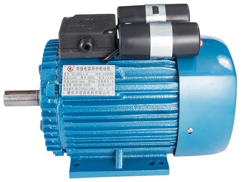 繞線式異步電動機-供應肇慶高質量的YL系列雙值電容異步電動機(單相)