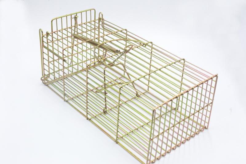 多次捕鼠器_廣東有品質的大號捕獵籠供應商是哪家
