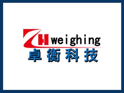 北京電子皮帶秤