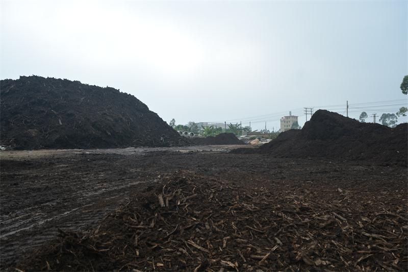供應肇慶合格的有機覆蓋物泥炭木屑-園林綠化用土