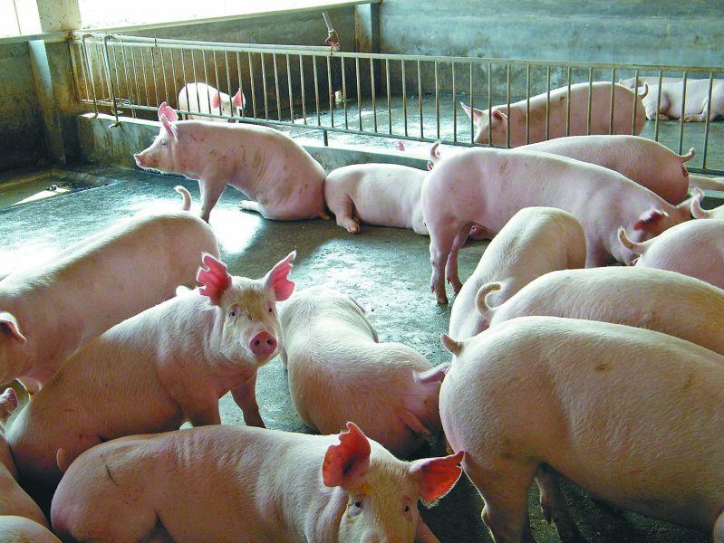 养殖场除臭及污水处理
