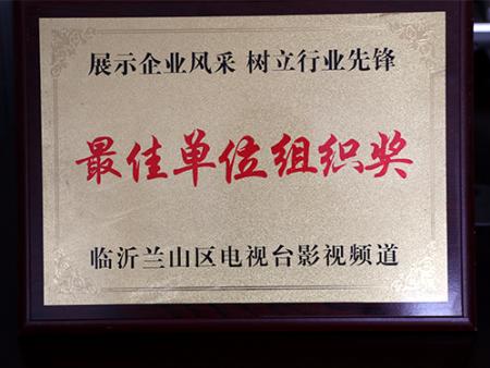 单位组织奖