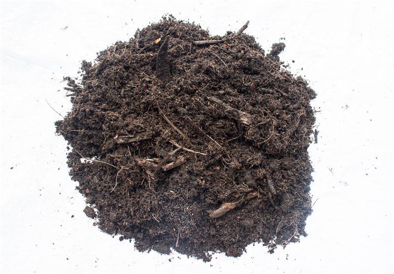 廣東綠化土廠家|肇慶高性價天然泥炭土哪里有供應