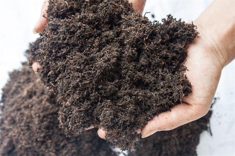 優良的營養泥炭土提供商當屬恒發農業|草炭土多少錢一袋