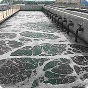 广东声誉好的卓冠牌复合型生物除臭剂供货商是哪家 屠宰厂微生物除臭剂招商