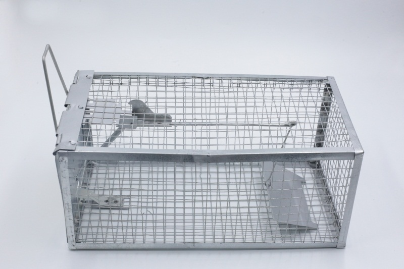 肇慶新款便捷型捕鼠器出售 捕鼠籠哪里有賣