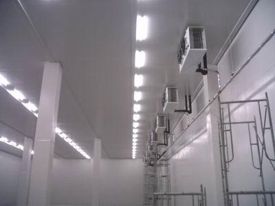 广州速冻冷库工程