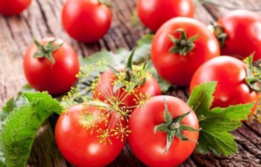番茄保鲜冷库中贮藏要注意哪些问题?