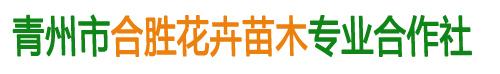 青州市合胜花卉苗木专业合作社