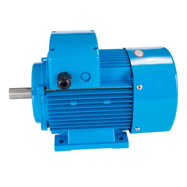 异步电动机厂家告诉您异步电动机的速度控制方法