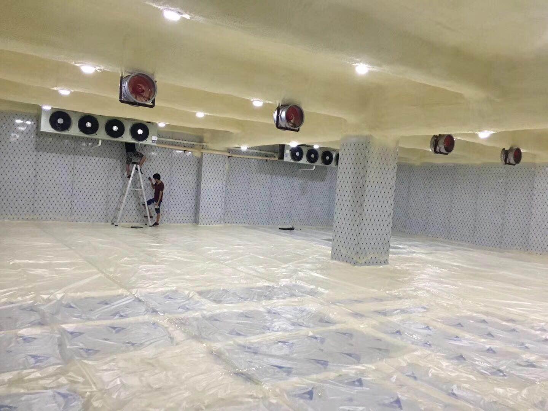 广州高性价食品速冻冷库批售 白云区食品速冻冷库供应商