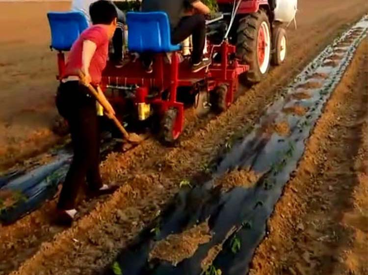 辣椒移栽机功能有哪些