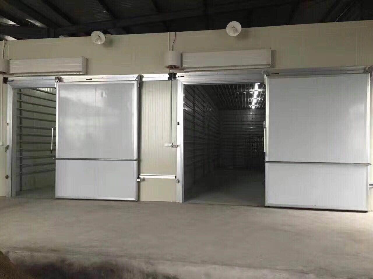广州哪里有供应优惠的蔬菜保鲜冷库 蔬菜保鲜冷库怎么样