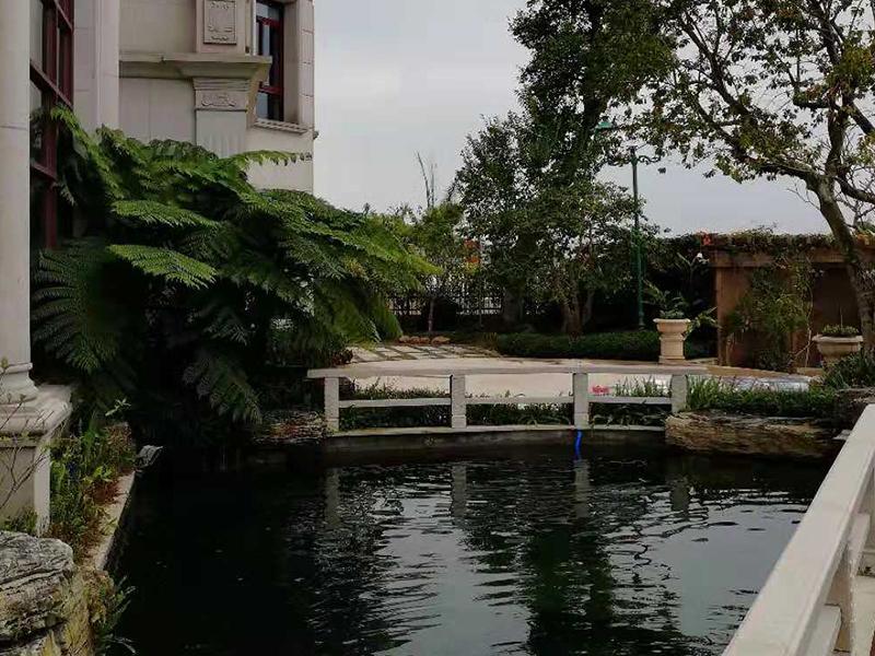 有保障的鱼池假山凉亭花架制造推荐,家庭鱼池过滤系统