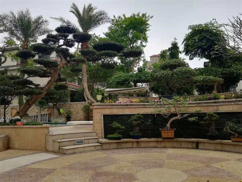 「私家花园设计施工」哪些地方需要用到植物租摆及养护要点
