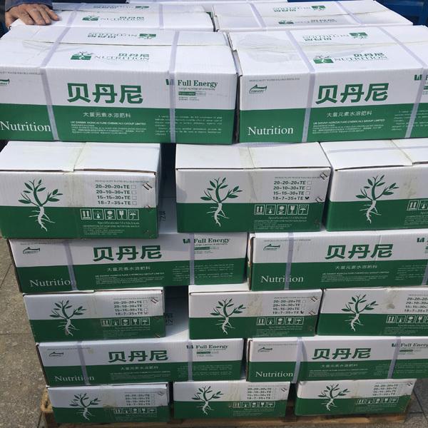 黄绿皮尖椒厂家:辣椒高产的妙招