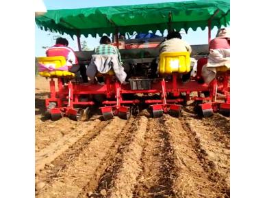 白芍栽植機報價-性價比高的丹參栽植機供應信息