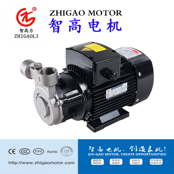 ZGLZ不锈钢增压旋涡泵