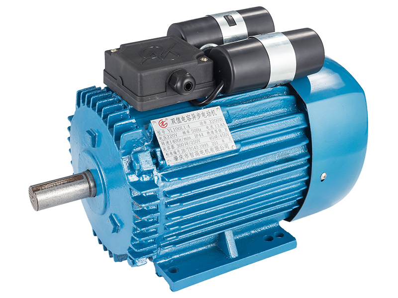 物超所值的YL系列双值电容异步电动机(单相)智高电机供应-拉丝机电动机