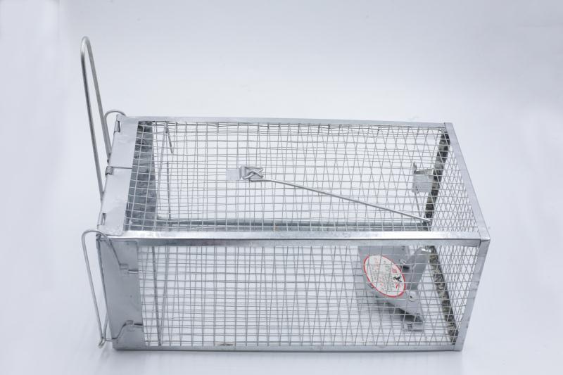 B-1型踏板捕鼠器