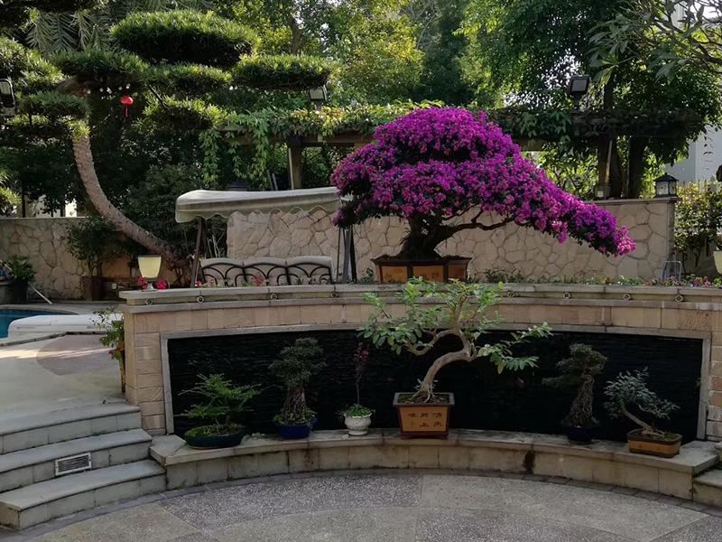 去哪找有保障的花园整体规划设计施工-拆装式泳池设计