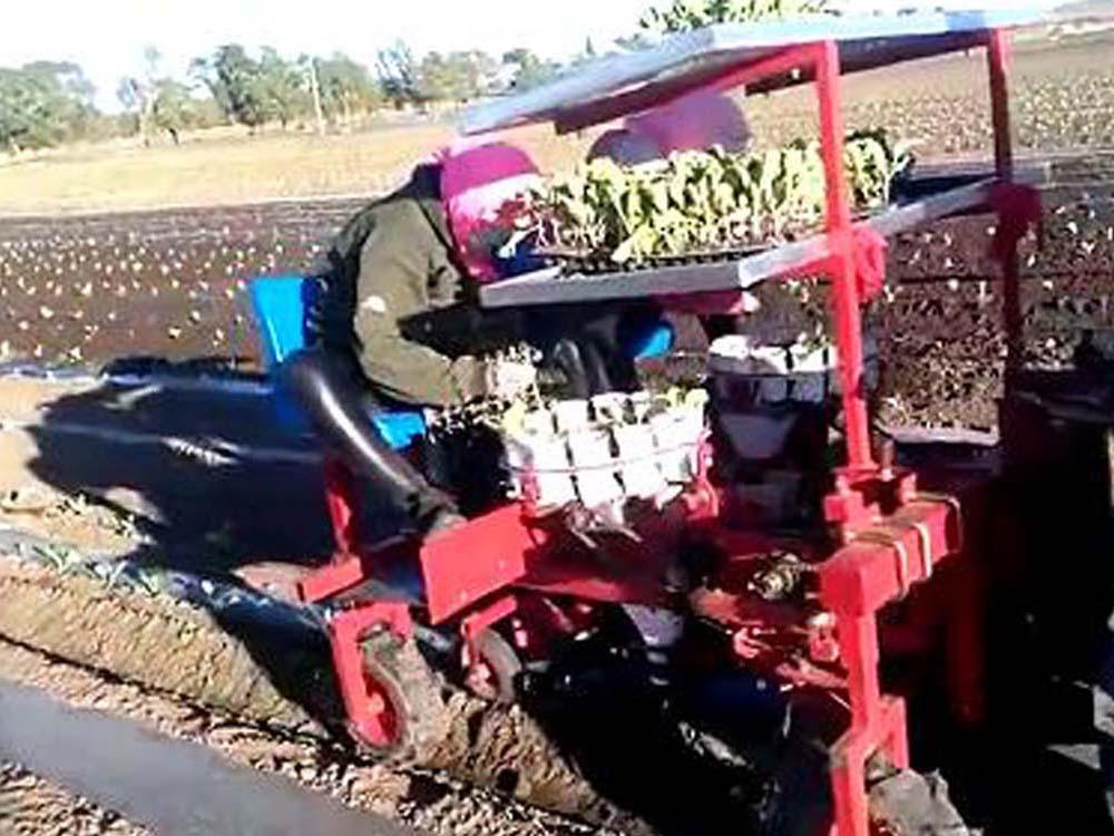 西兰花种植机日常如何保养