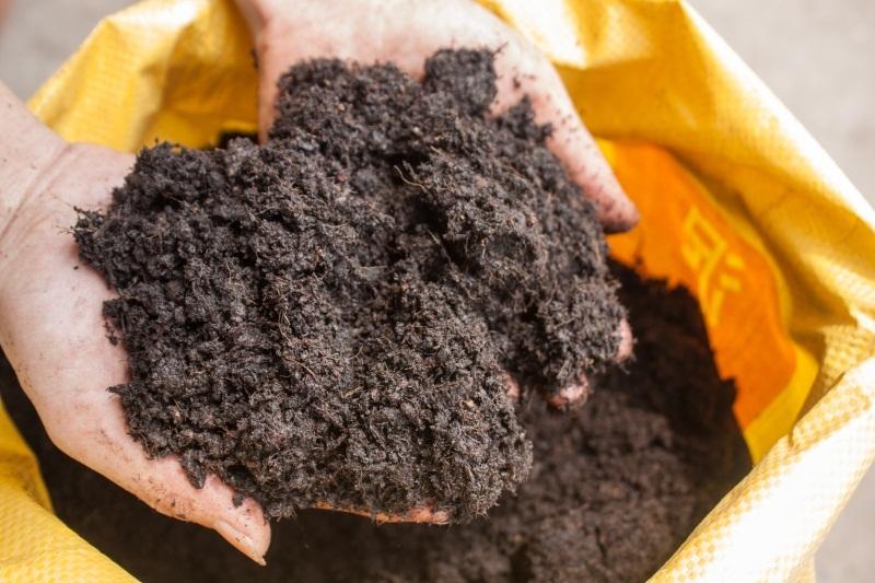 广东草炭土有何功效及特点和作用