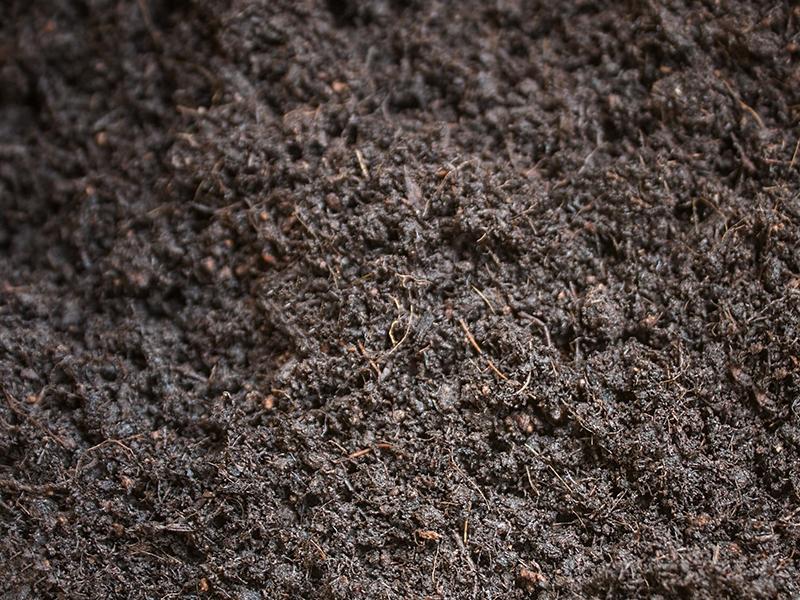 育苗基质批发市场-哪里有提供高性价球场垂直绿化土