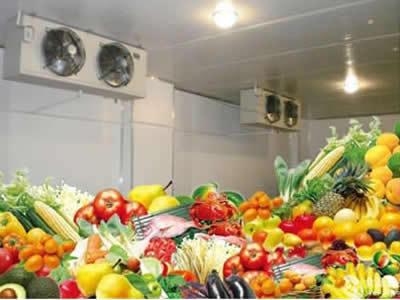 广州保鲜冷库-蔬菜保鲜更好的方法