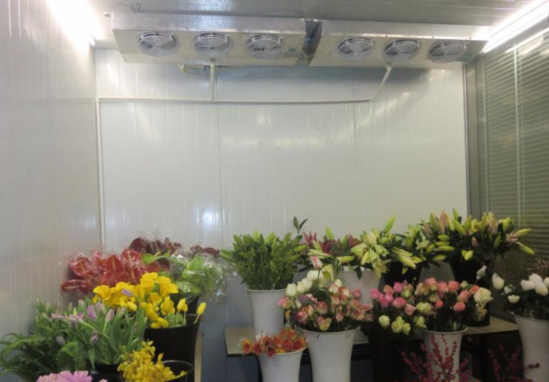关于鲜花保鲜冷库的N条问题