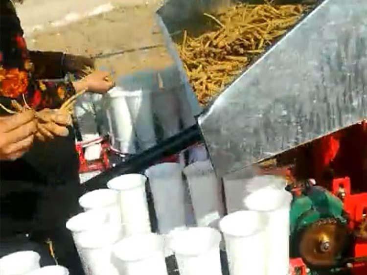 黄芩种植机价格