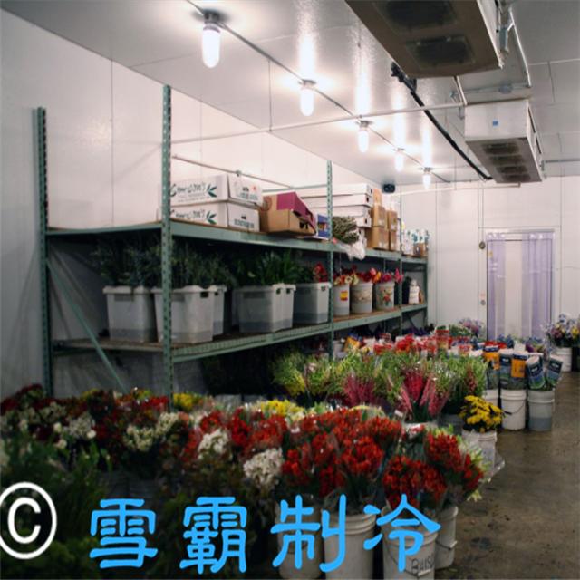 广州越秀区30平方鲜花冷库工程