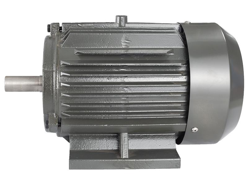 变频异步电机_供应智高电机实惠的Y2系列三相异步电动机